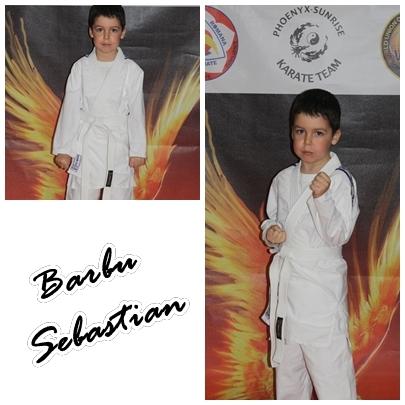 Barbu Sebastian