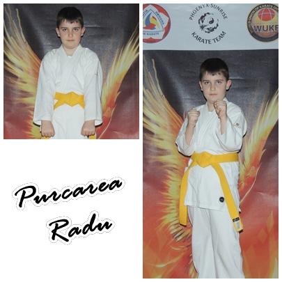 Purcarea Radu