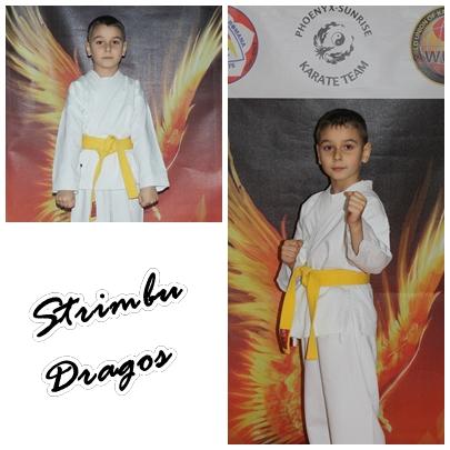 Strimbu Dragos